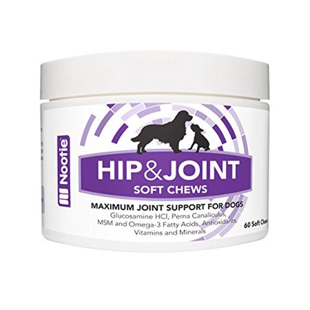 glucosamine chondroitin for dogs reviews